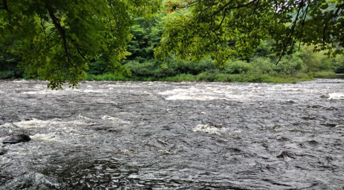 Packrafting the Upper Lehigh River to Rockport Gorge